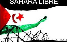 sahara_libre.jpg